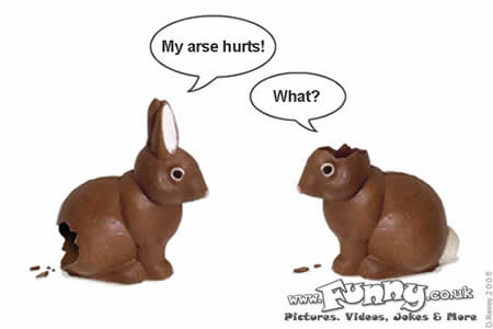 happy easter funny images. happy easter funny bunny.